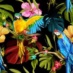 Papier peint Perroquets flashys