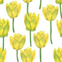 Papier peint Tulipes en aquarelle