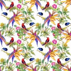 Papier peint Oiseaux en aquarelle