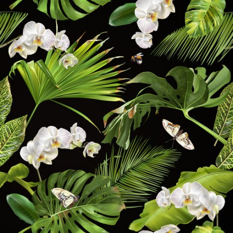 Papier peint Orchidées tropicales