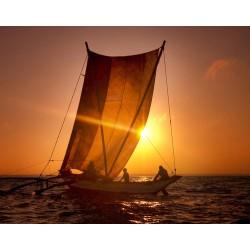 Catamaran au Sri Lanka