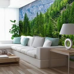Papier peint Forêt de sapins