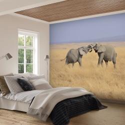 Papier peint Jeux d'Elephants