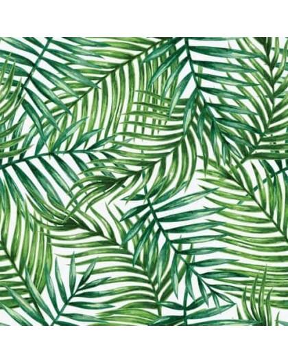 Papier peint Palmiers tropicaux